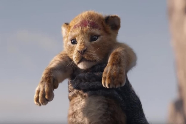 le_roi_lion_600x400.jpg